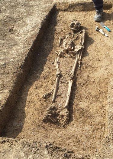 Vermutlich aus dem siebten oder achten Jahrhundert stammt dieses Skelett einer Frau, das nun bei Bauarbeiten in Gültstein zutage trat  GB-Foto: gb
