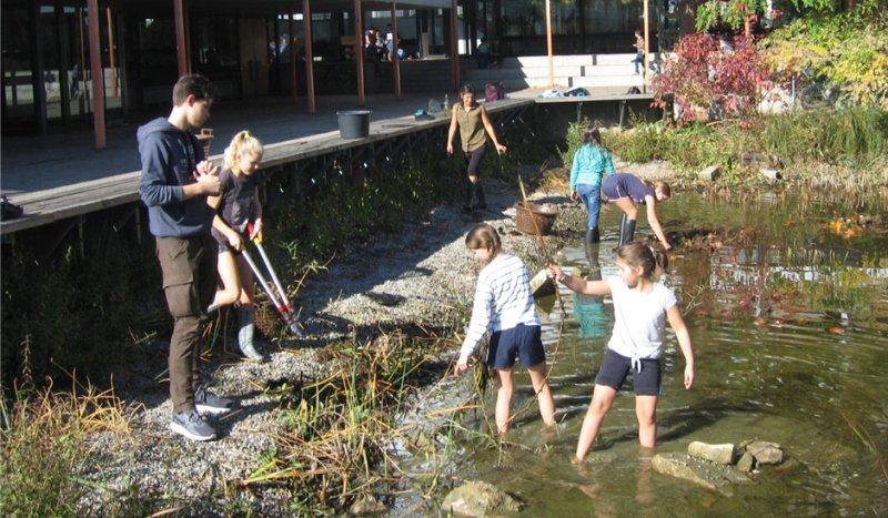 Ob  Schulsee oder Heilpflanzen: Schüler kümmern sich um Umweltprojekte GB-Fotos: gb