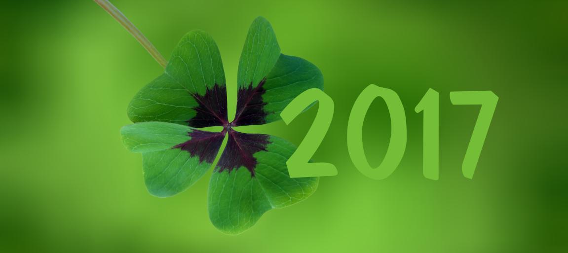Wir wünschen Ihnen einen guten Rutsch und ein frohes neues Jahr ...