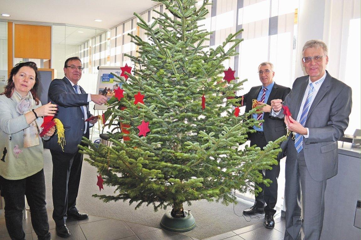 Weihnachtsbäume erfüllen viele Wünsche - Kreiszeitung Böblinger Bote